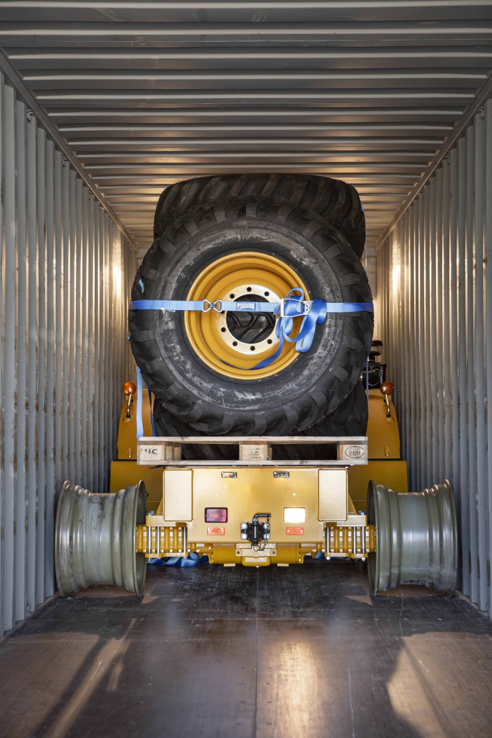 hydra inside a container on temporary rims